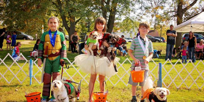 2014 Winners Kids & Dogs