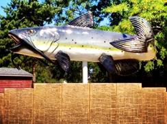 Image for 45th Annual Trempealeau Lions Catfish Days