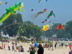 Image for Soar on the Shore Kiting Event