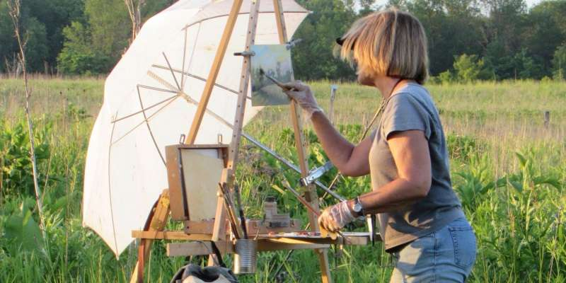 In a Cedarburg meadow full of life, artist Lynn Rix hastens to capture the beauty before the sun moves on.