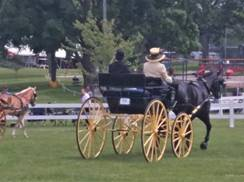Image for Columbus Carriage Festival