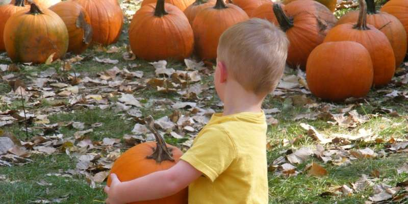 Picking out a pumpkin at the Great Pumpkin Train at the National Railroad Museum.