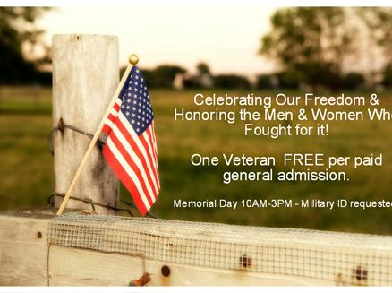 Image for Memorial Day Celebration