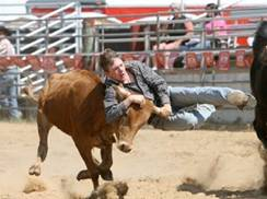 Image for Wisconsin High School Regional Rodeo
