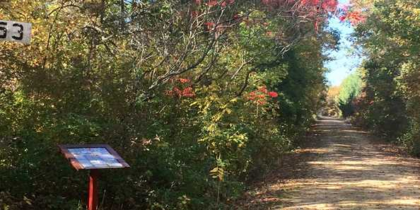 Enjoy the beautiful fall colors during your walk or ride.