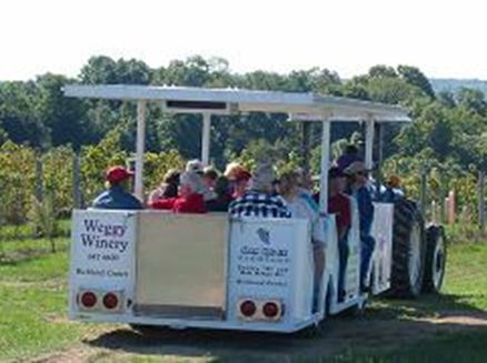 Image for Weggy Winery Kick-Off of Vineyard and Tram Tours