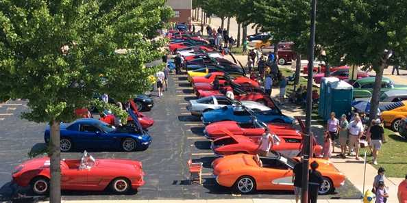 Cars lined up for the Automobiles Gallery Annual Car Show.
