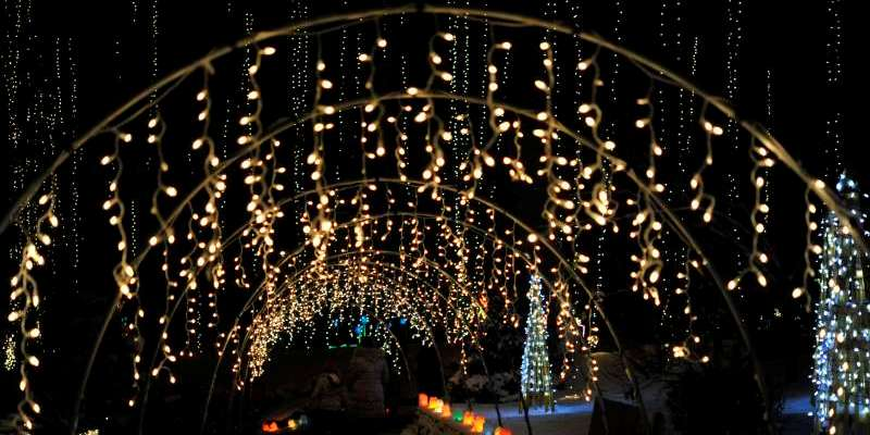 Walk through the beautiful Gardens aglow with lights!