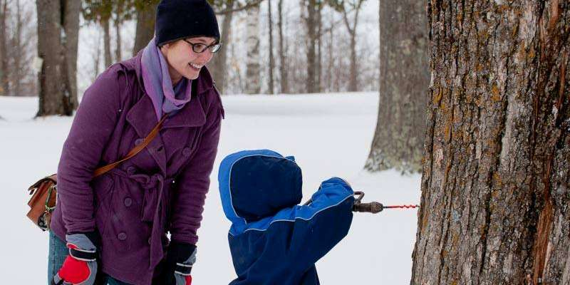 Hands-on tree tapping demonstrations are fun for all ages!