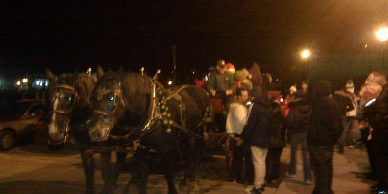 Horse drawn wagon rides