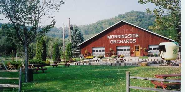 Morningside Orchard