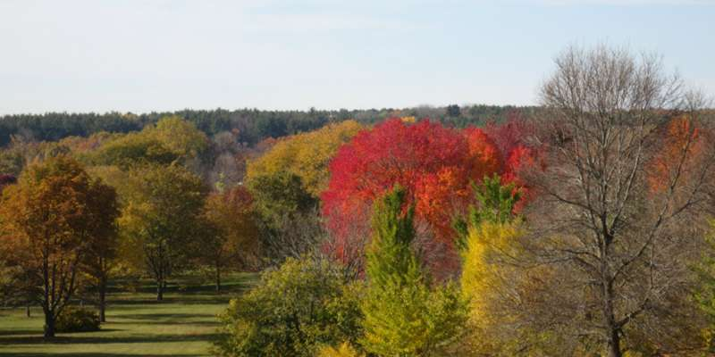 University of Wisconsin Arboretum in Fall
