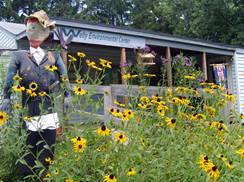 Image for Welty Environmental Center