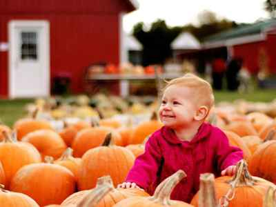 Busy Barns Adventure Farm - Fort Atkinson