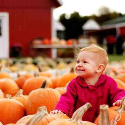 Young toddler smiling in pumpkin patch