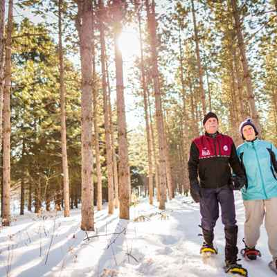 snowshoers in snow at nine mile forest