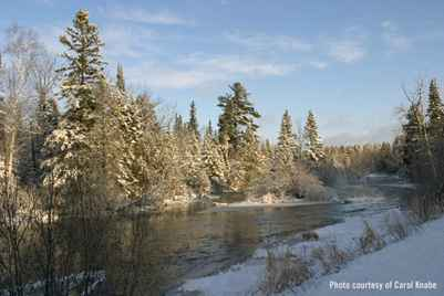 Namekagon River in Winter courtesy of Carol Knabe