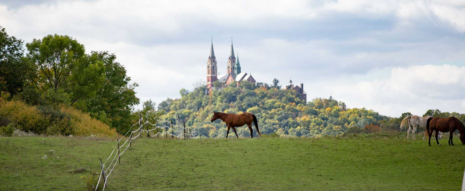 Horses Grazing in Field in Front of Holy Hill