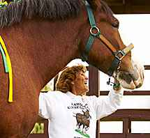 Judy Larson of Larson's Famous Clydesdales