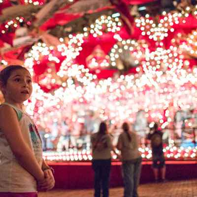 Girl standing in front of carousel