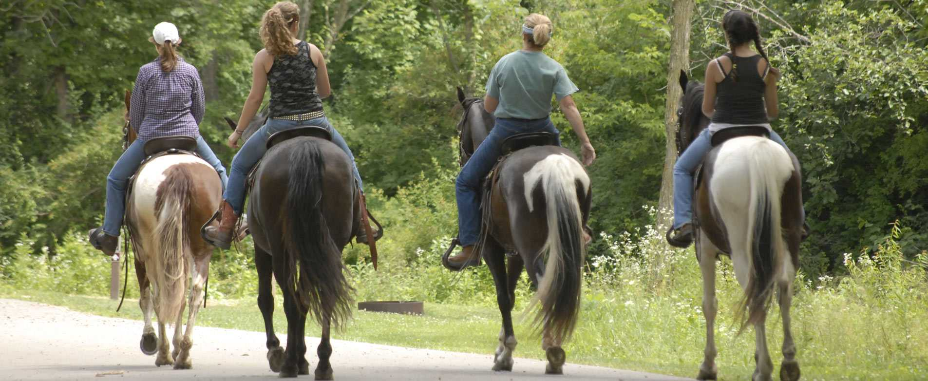 Horseback Riding at Wildcat Mountain State Park