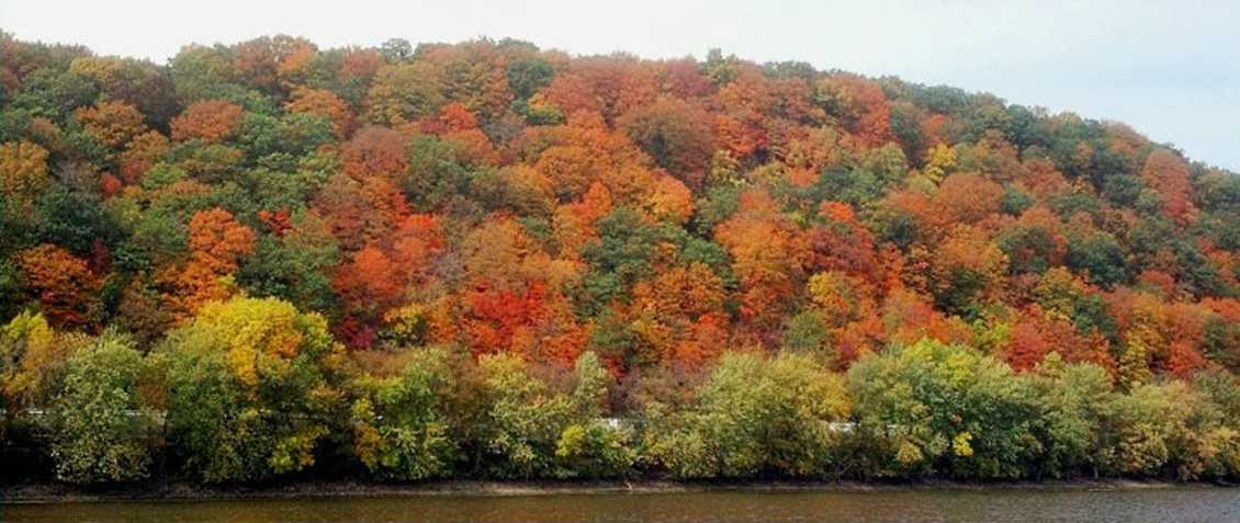 Fall foliage near Prairie du Chien