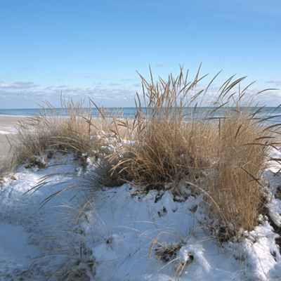 Sand dunes covered in snow