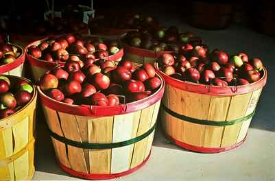 Bayfield Apple Festival | Photo Credit Don Albrecht