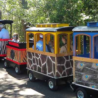 family riding small electric zoo train