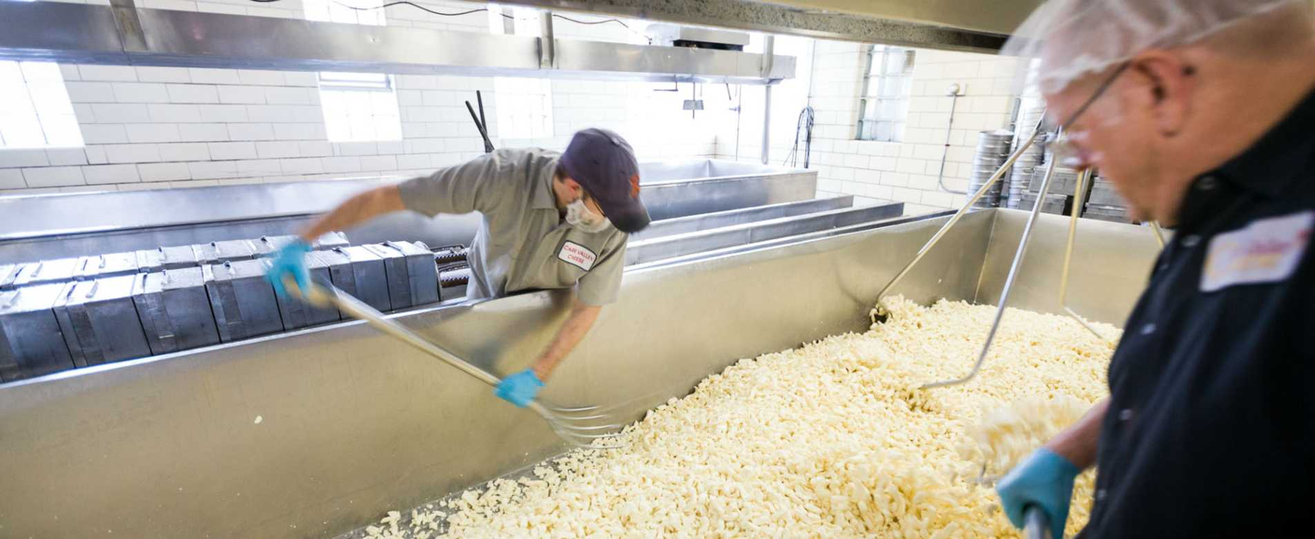 Cheese Curds at Carr Valley Cheese Factory