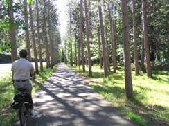 Image for Old Abe State Trail