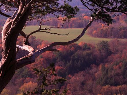 Image for Wildcat Mountain State Park