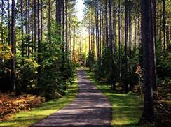 Image for Heart of Vilas County Paved Bike Trail