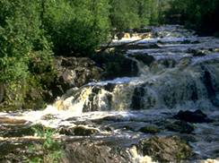 Image for Copper Falls
