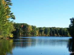Image for Peshtigo River State Forest