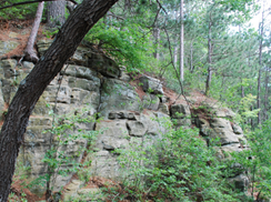Image for Mill Bluff State Park