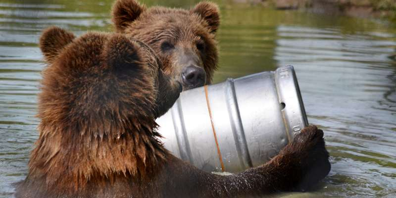 Munsey & Boda, playing with a beer keg in the Bear Woods Lake!