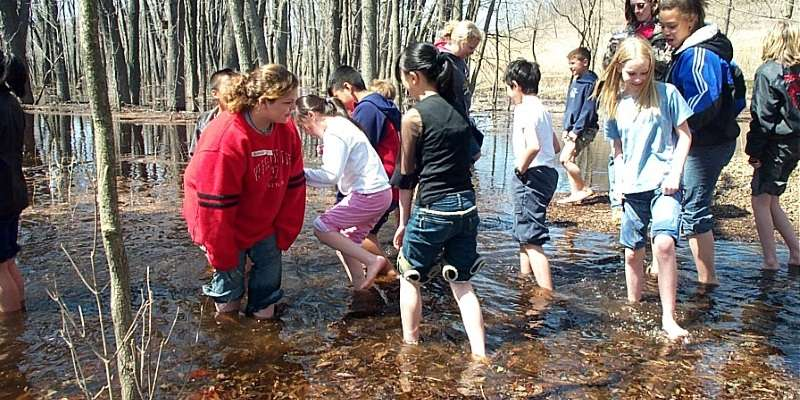 School group wading in lowlands
