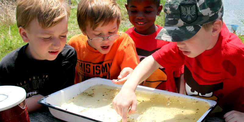 "ALNC's mission is to provide innovative hands-on programs for children and teachers that ""…teach the student to see the land, to understand what he sees, and enjoy what he understands"" in the spirit of Aldo Leopold."