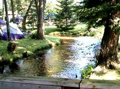 Image for Arbor Vitae Campground