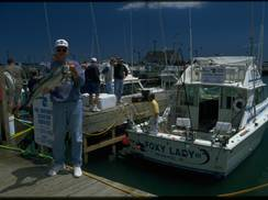 Image for Seahawk Fishing Charters