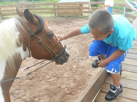 Image for Unbridled Hope Equine Assisted Learning Center