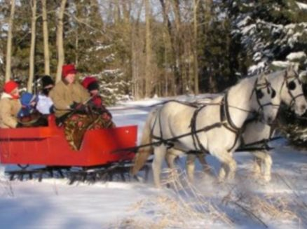 Image for Rocking L Acres Sleighrides