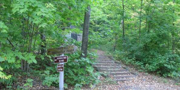 Trail to tower at Timm's Hill