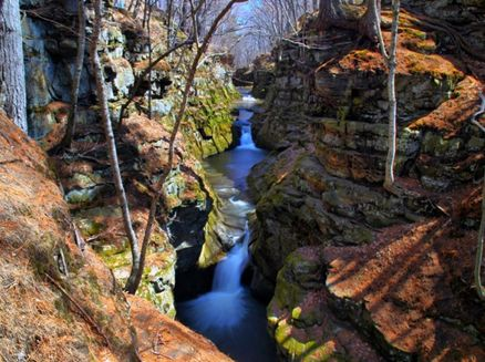 Image for Pewits Nest State Natural Area