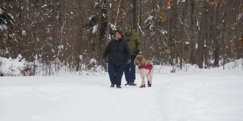 Walking the Moccasin Lake Snowshoe Trails