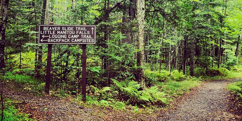 Pattison State Park is home to about nine miles of hiking trails. Photo by Anya Russom.