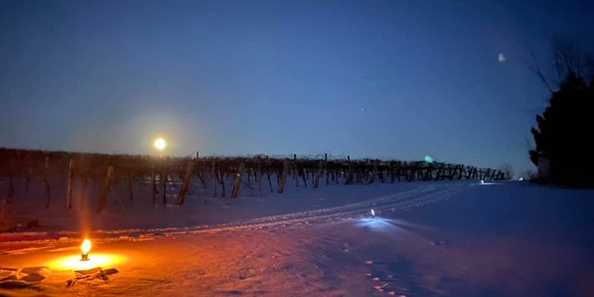 Nightime snowshoeing and winetasting excursions.