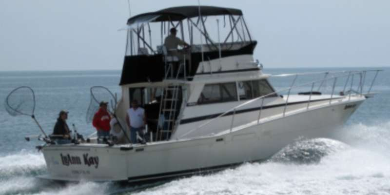 The LuAnn Kay, a newer Viking 40' Convertible, is equipped with Ray Marine electronics and top-of-the-line Shimano fishing tackle, and has accomodations comparable to the Nicole Lynn.