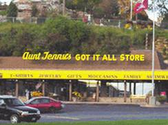 Image for Aunt Jenny's Got-It-All Store